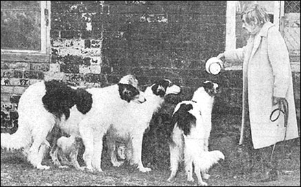 Photograph of Mrs Harpur and her dogs